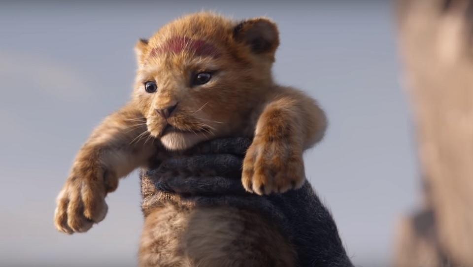Re Leone Zazu: Il Re Leone: Ecco Il Primo Trailer Del Live Action Diretto