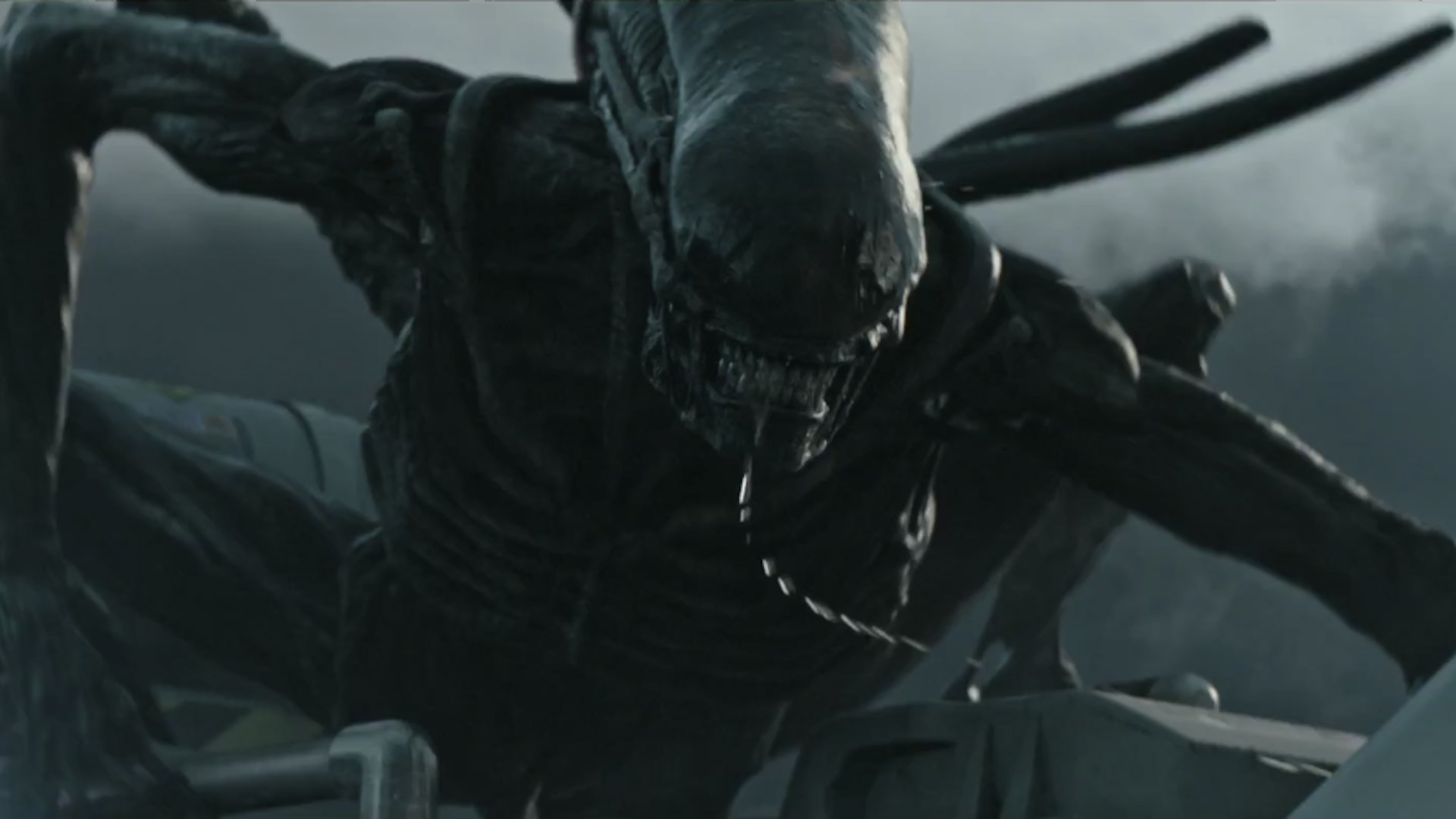 Alien: Covenant, lo xenomorfo