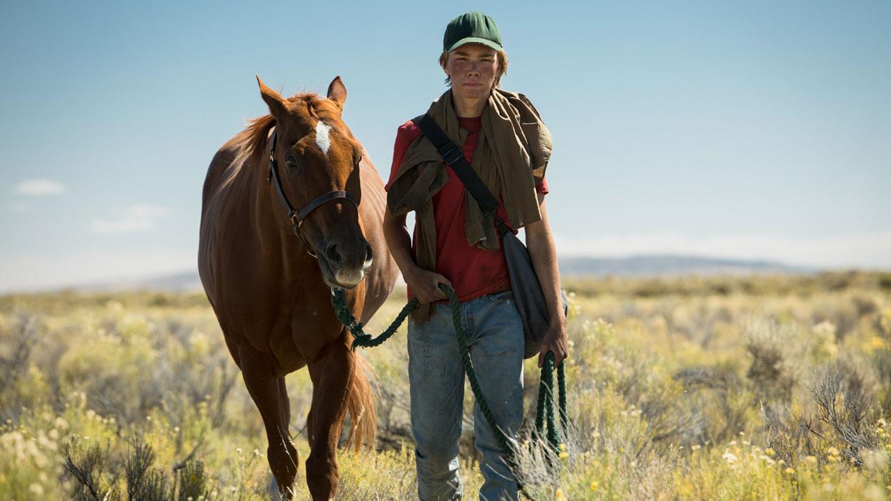 Lean on Pete a Venezia 74: ecco Charlie Plummer e il cavallo