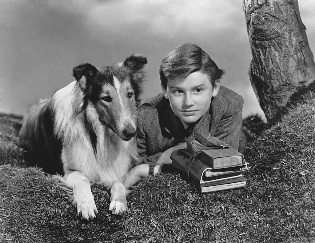 orna a casa Lassie 2021